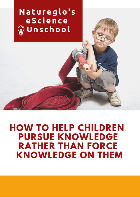 How Can We Help Children Pursue Knowledge Rather than Force Knowledge on Them?